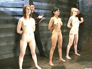 Magnificent First-timer Honies Tied Up And Tormented By A Pervy Dude